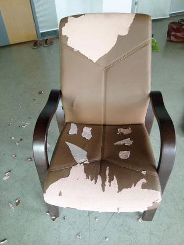 九龙坡区椅子换皮换布效果图